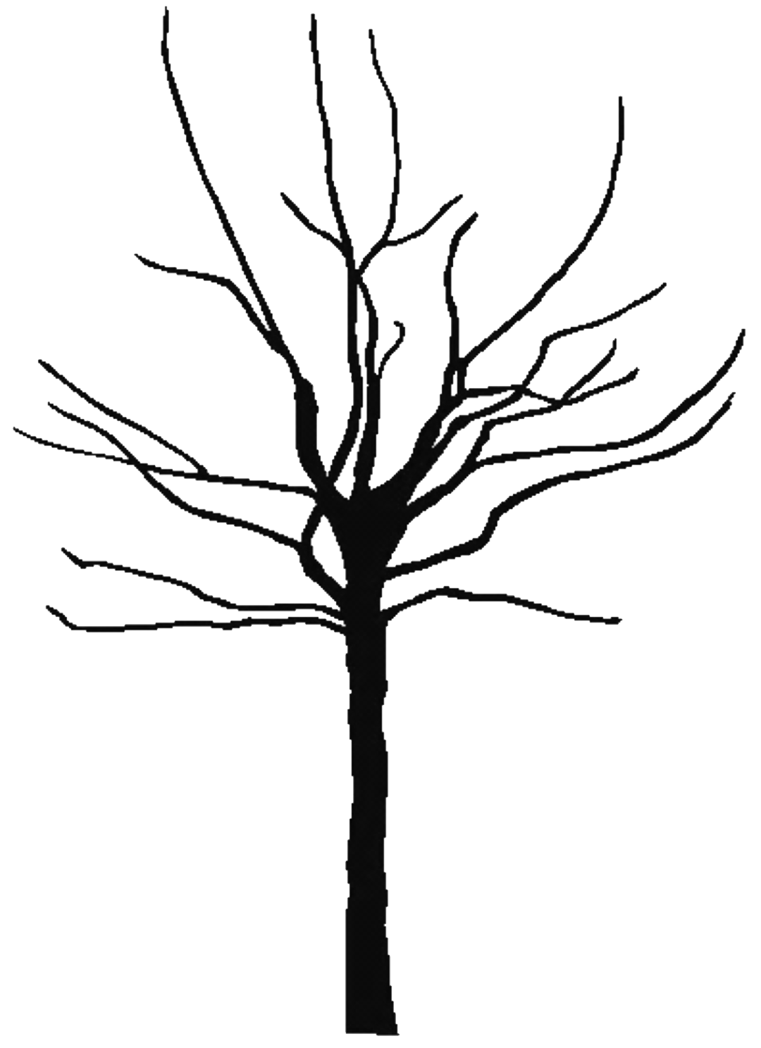 Black And White Bare Tree Clipart | Clipart Panda - Free Clipart ...