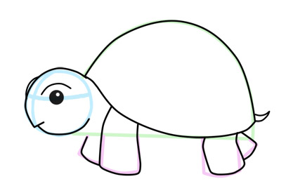 Turtle Drawing Cliparts Co