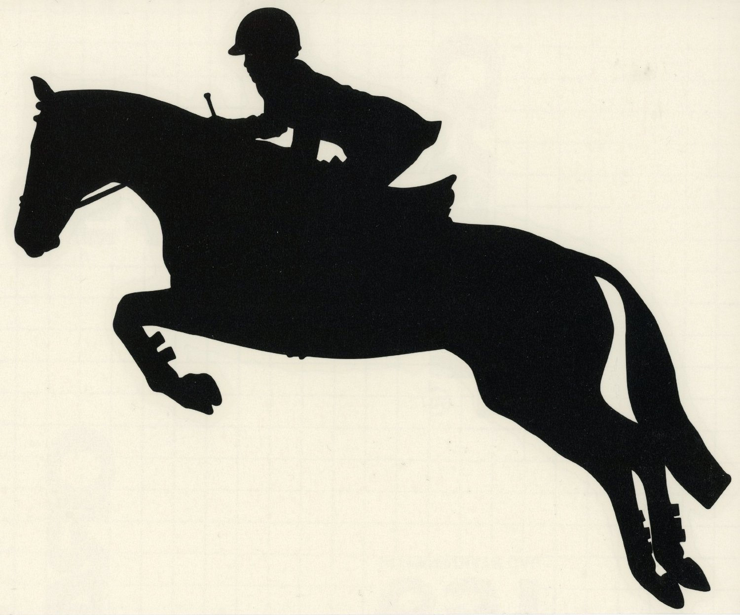 Amazon.com: English Equestrian Hunter Jumper Horse Decal-Small ...