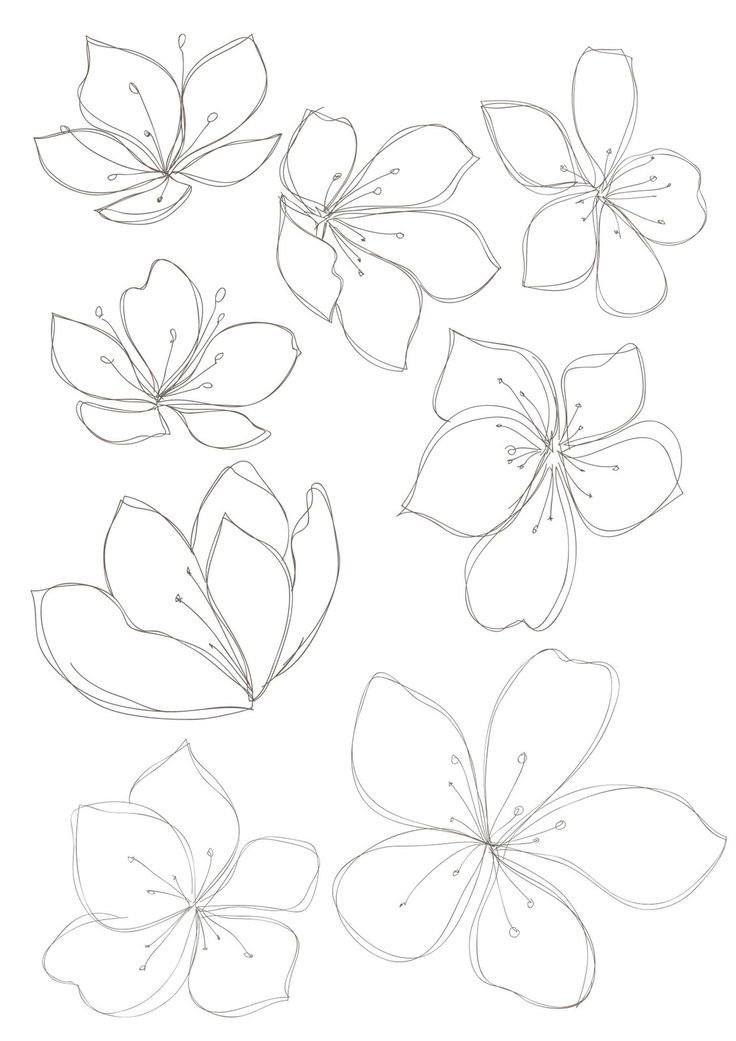 Line Drawing Flower Pattern : Floral drawings cliparts