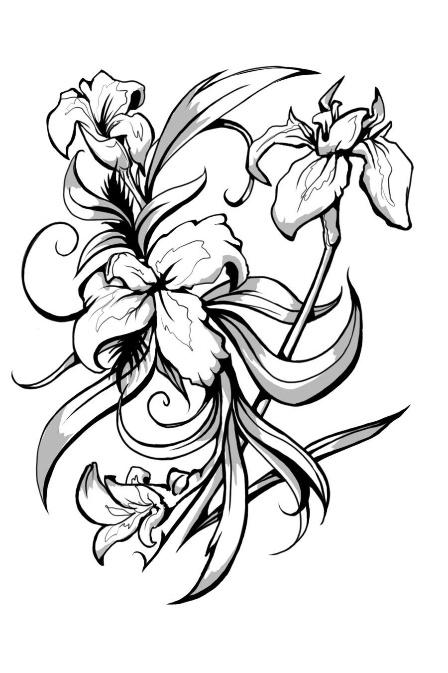 Line Drawing Of Iris Flower : Black and white flower tattoo cliparts