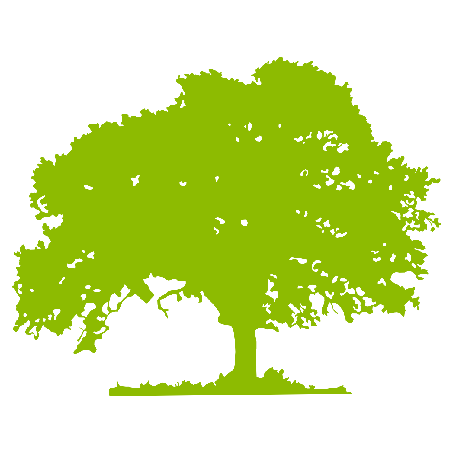 Oak Tree Vector Free Download | Clipart Panda - Free Clipart Images