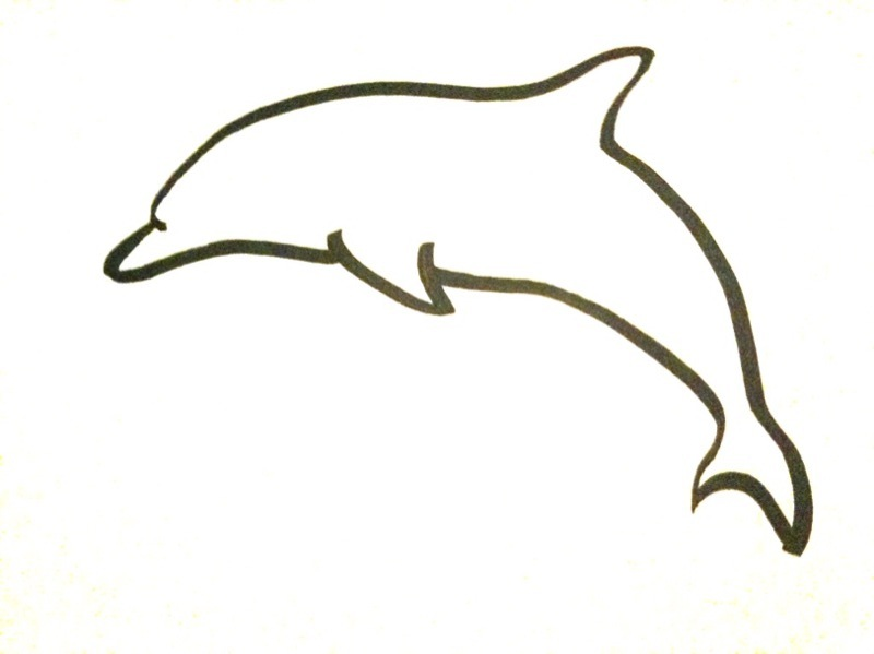 Line Drawing Dolphin : Dolphin drawing pictures cliparts