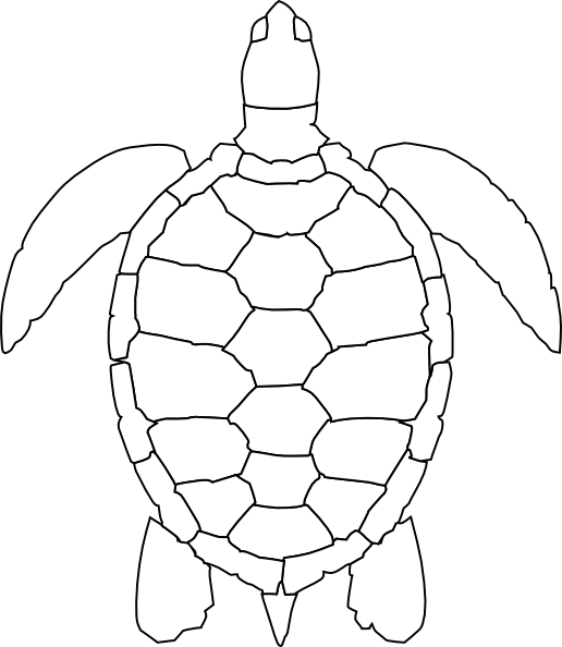 Turtle Shell Clip Art - Cliparts.co