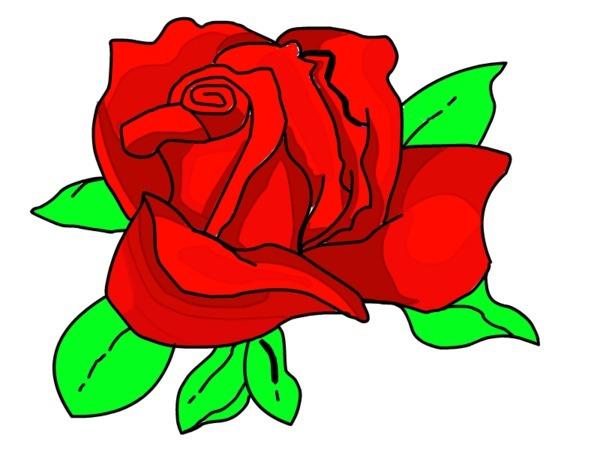 how to draw a cartoon rose