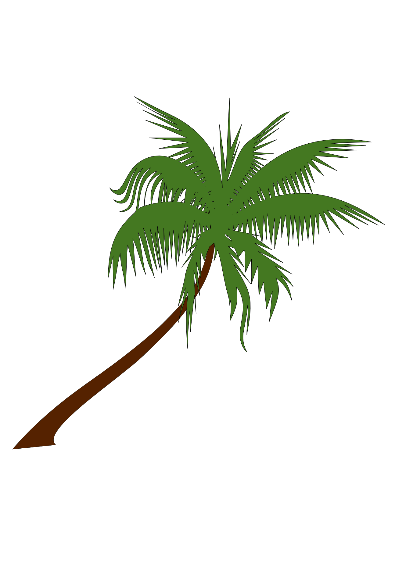 palm tree with coconuts drawing - photo #15