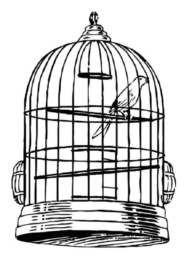 bird cage coloring pages - photo#23