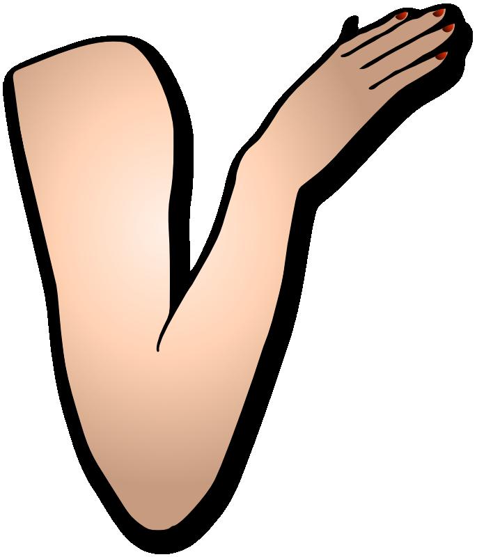Clip Art Arm - Cliparts.co