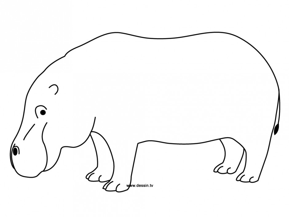Line Art Hippo : Cartoon hippos pictures cliparts