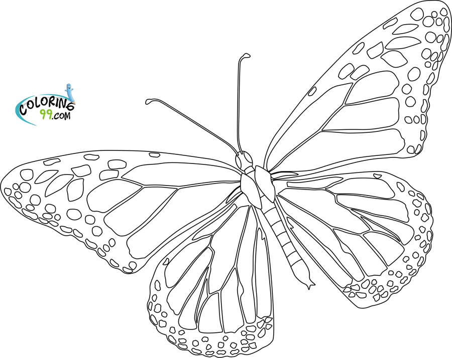 monarch butterfly template - cliparts.co