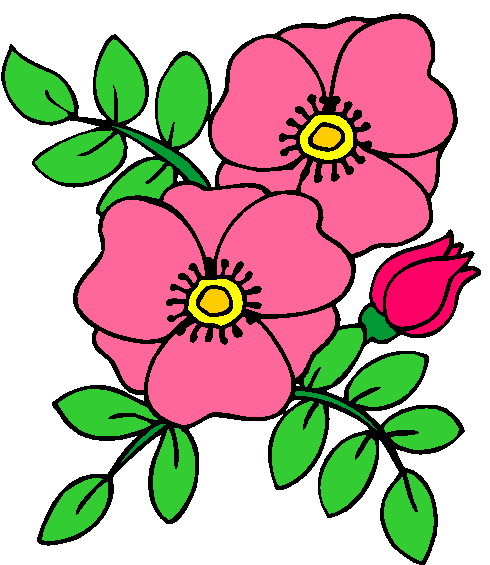 clipart garden flowers - photo #39