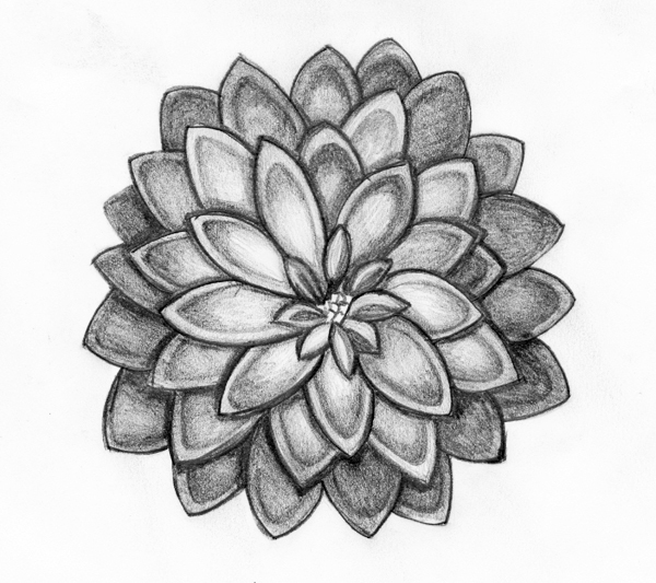 Drawings Of Flowers - Cliparts.co