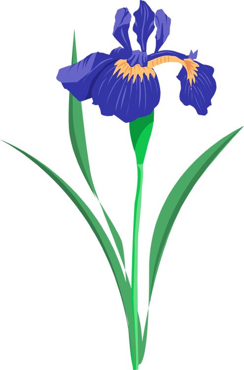 Purple Iris - ClipArt Best - ClipArt Best
