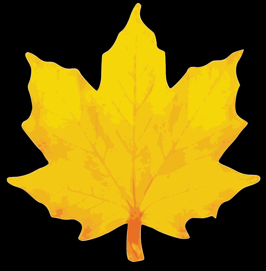 Autumn Leaf selection Clipart, vector clip art online, royalty ...
