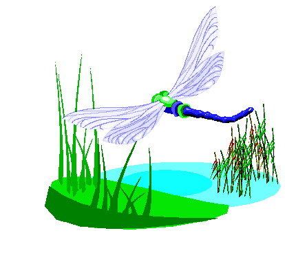 Dragonfly Graphics and Animated Gifs