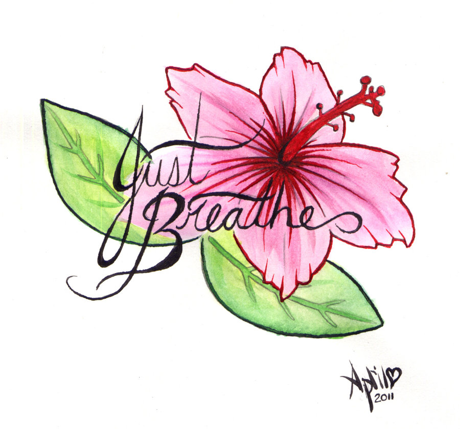 Hibiscus Flower Outline - Cliparts.co