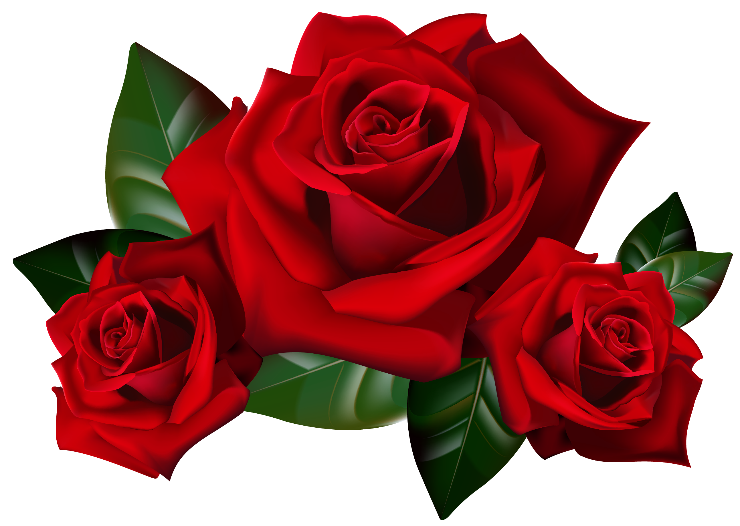 red roses clipart - photo #4