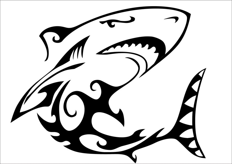 Line Art Shark : Shark line art cliparts