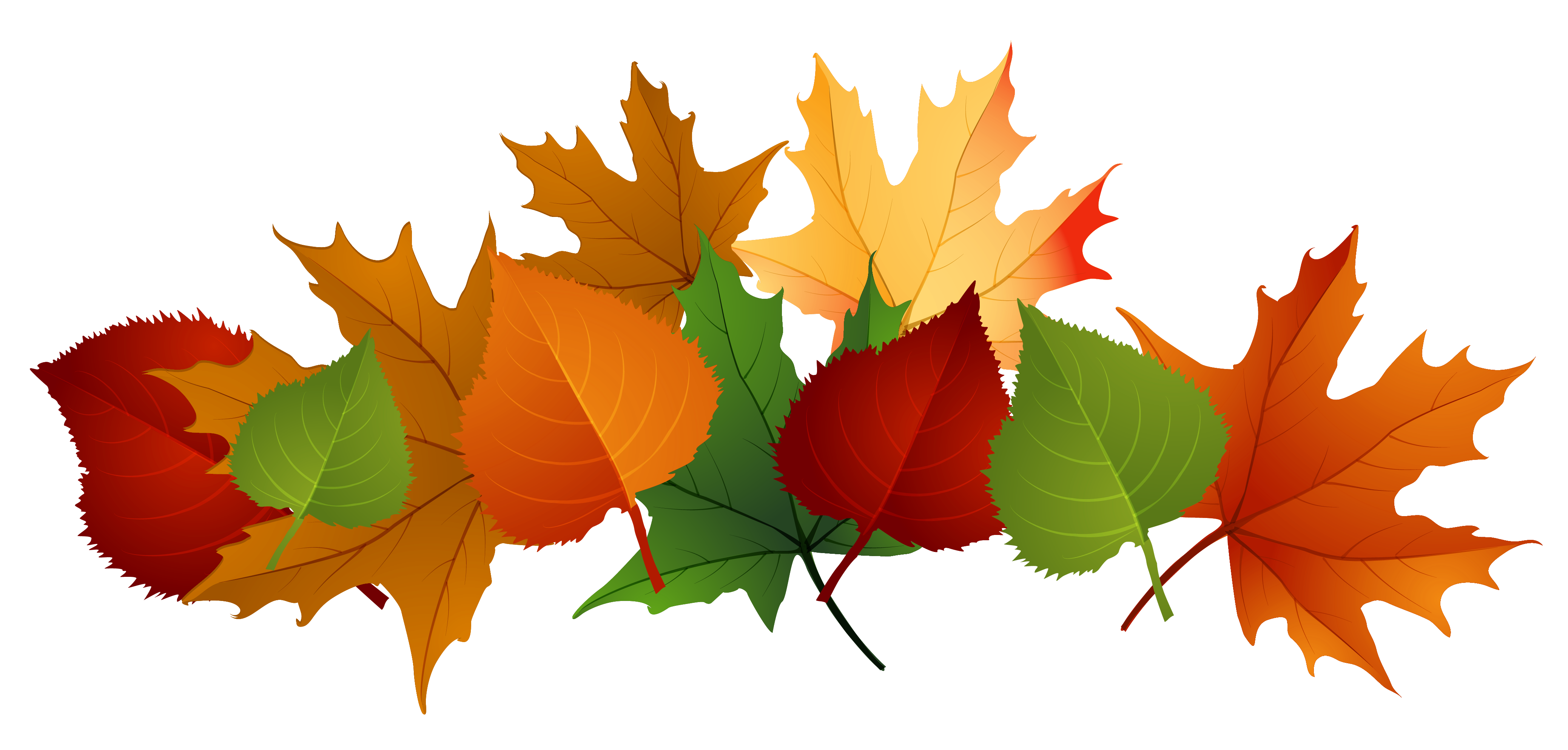 Free Fall Leaves Clip Art - Cliparts.co Fall Flowers Border Clip Art