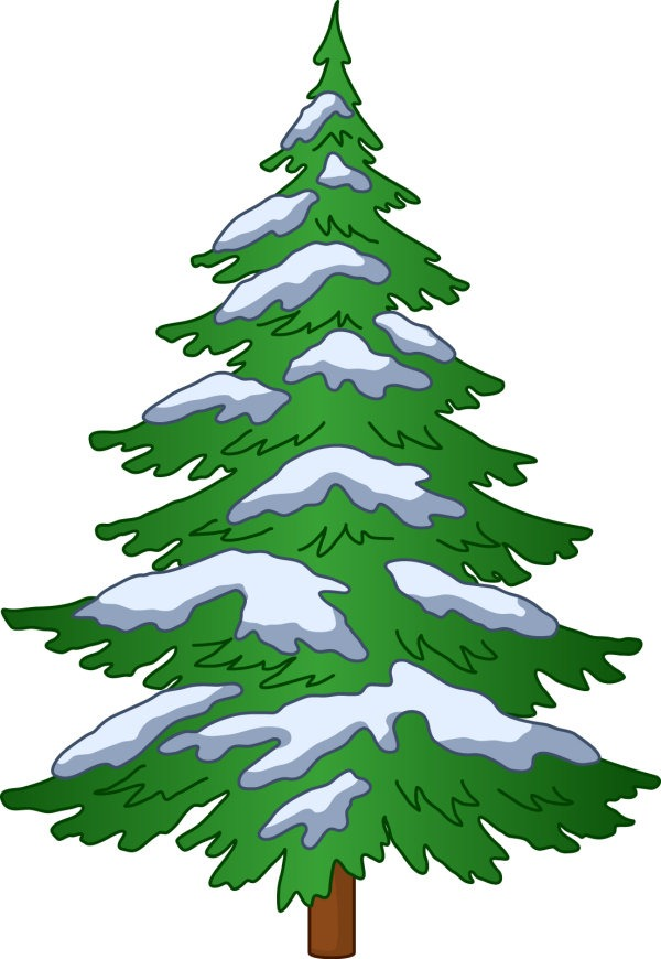 Christmas Trees Michigan