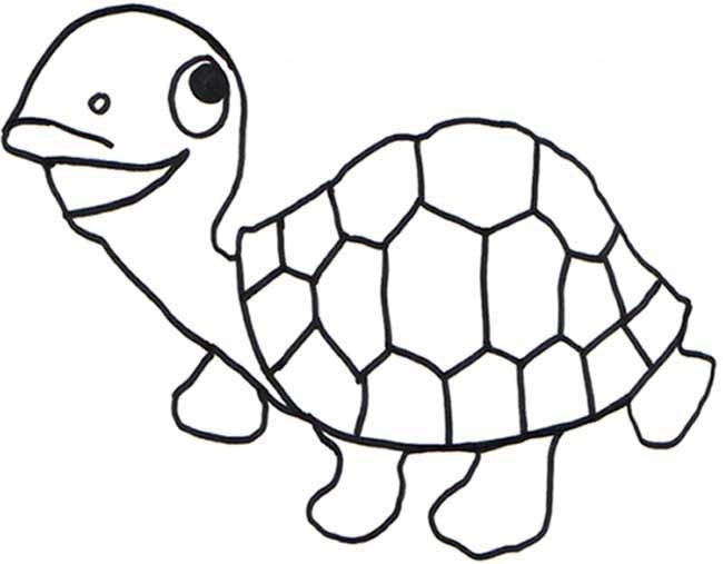 Free Reptiles Cliparts Co Reptiles Coloring Pages