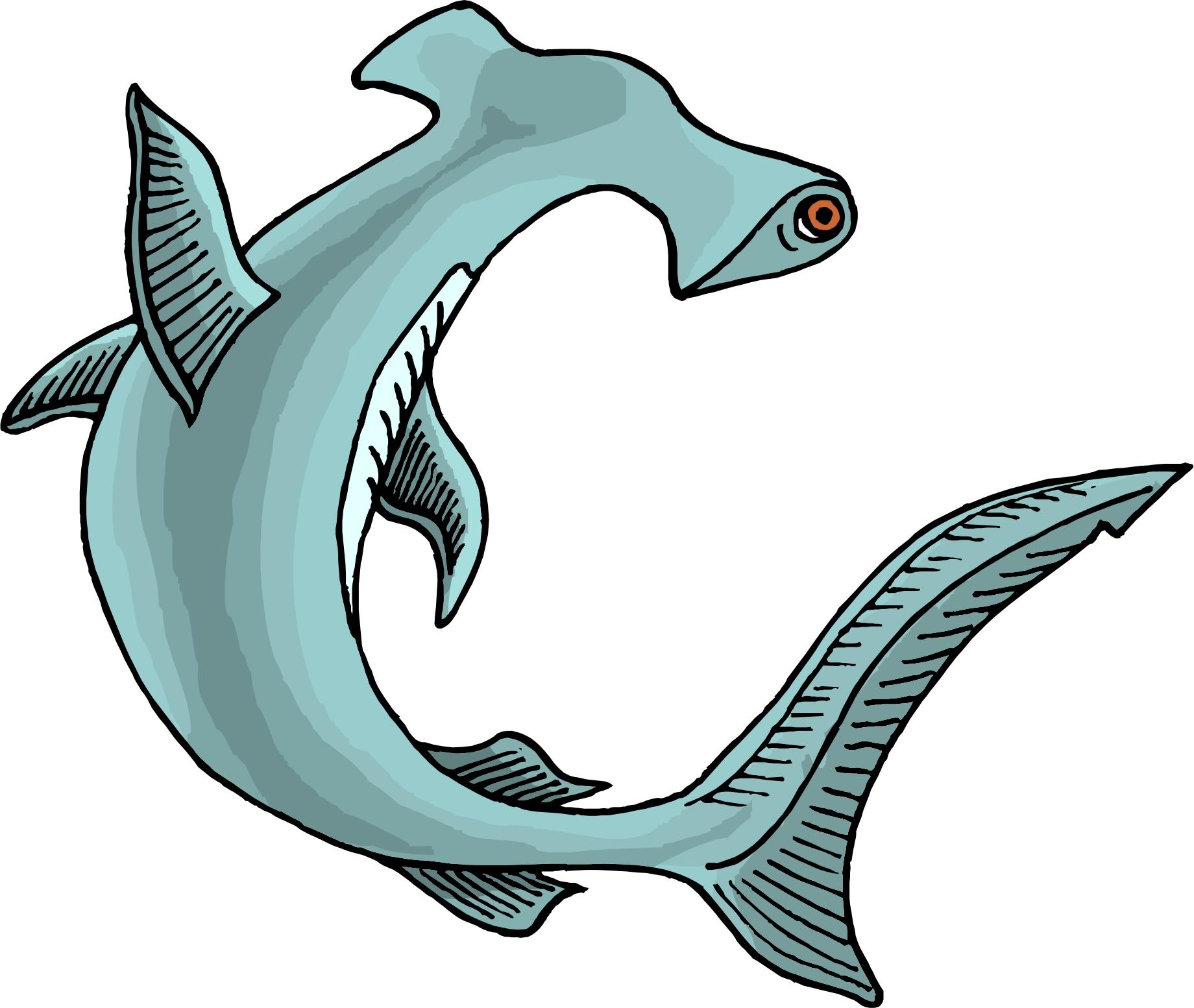 free animated shark clipart - photo #32