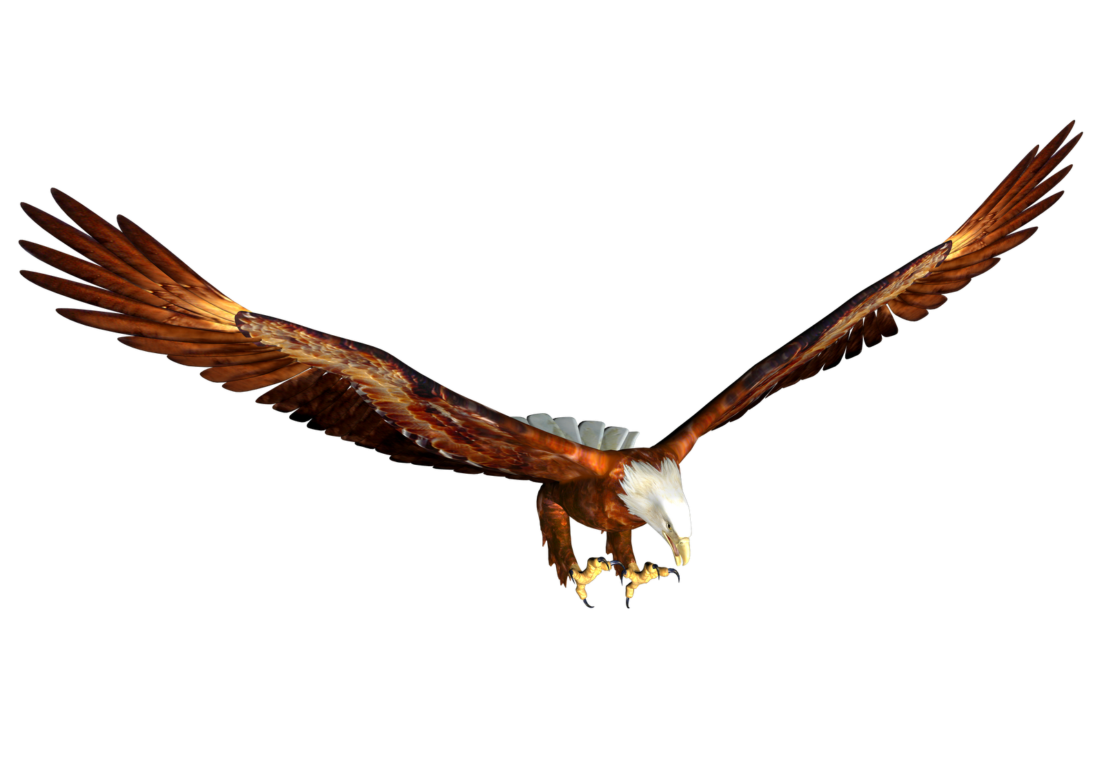 Flying Eagle Clipart - Cliparts.co
