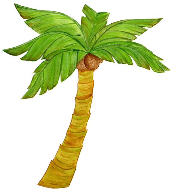 Palm Tree Images Cliparts Co