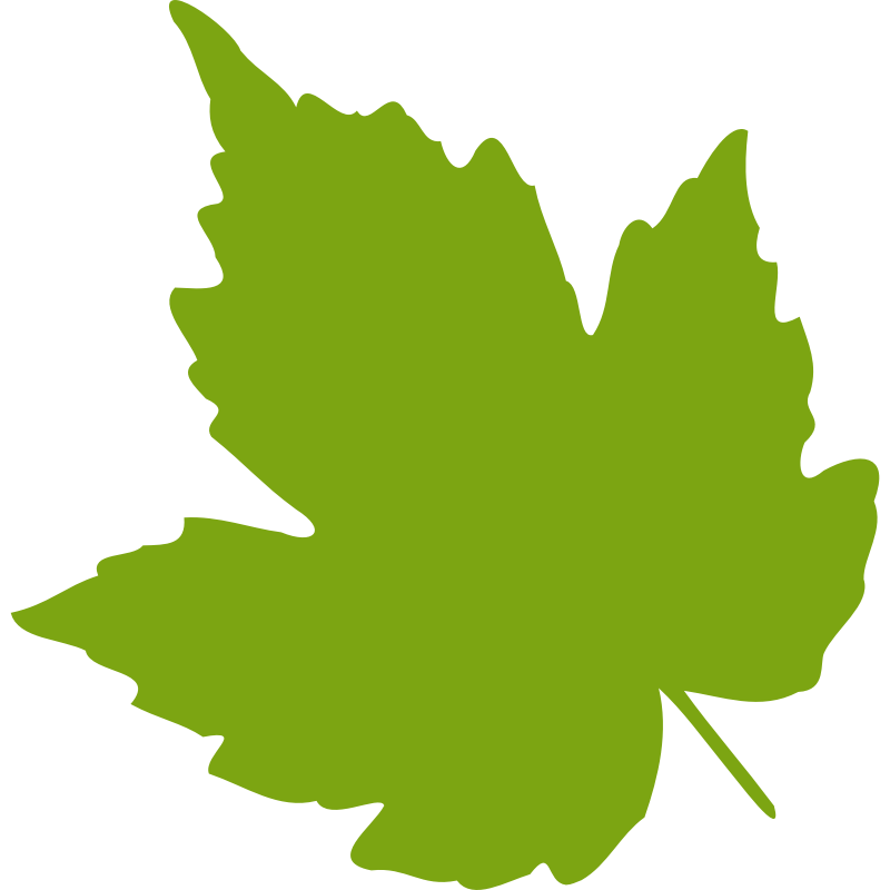Clipart - leaf 04