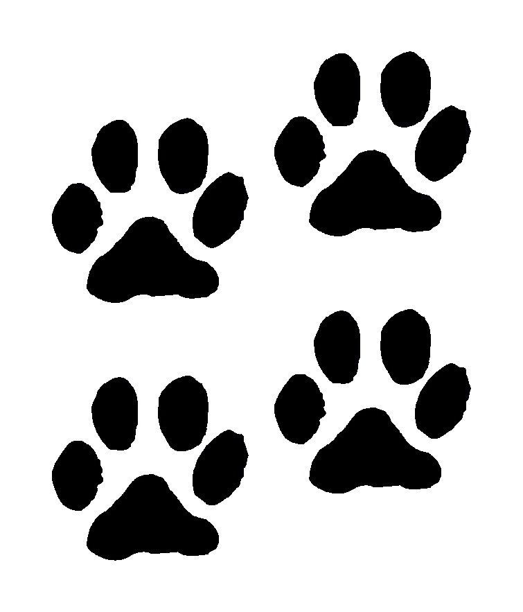 dog paw prints in - photo #7