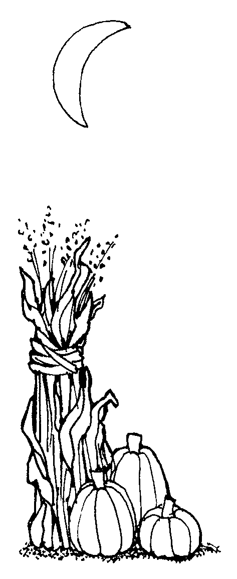 corn stalks coloring pages - photo#34