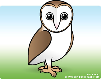 cartoon barn owl just b cause