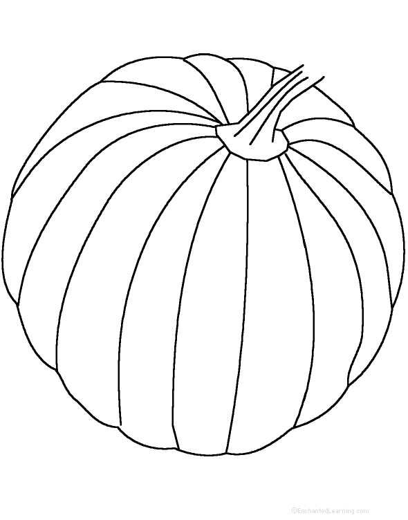 how to draw a melon