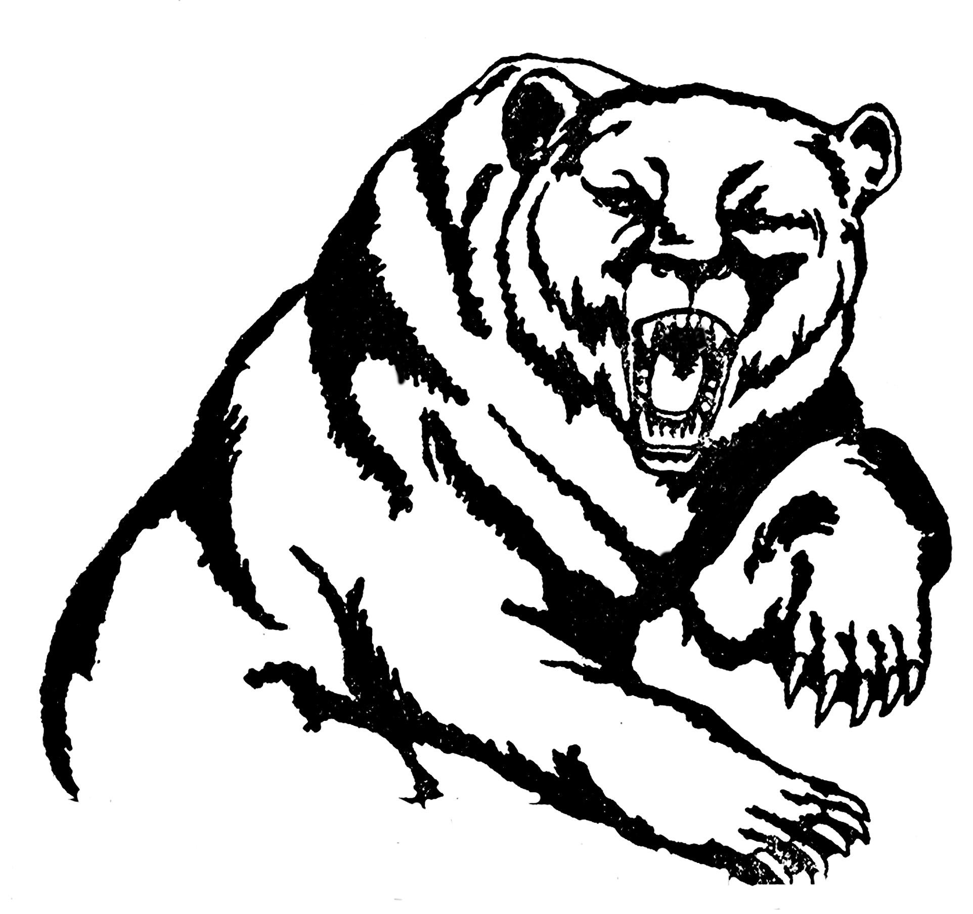 Line Drawing Of Bear Face : Bear mascot clipart cliparts