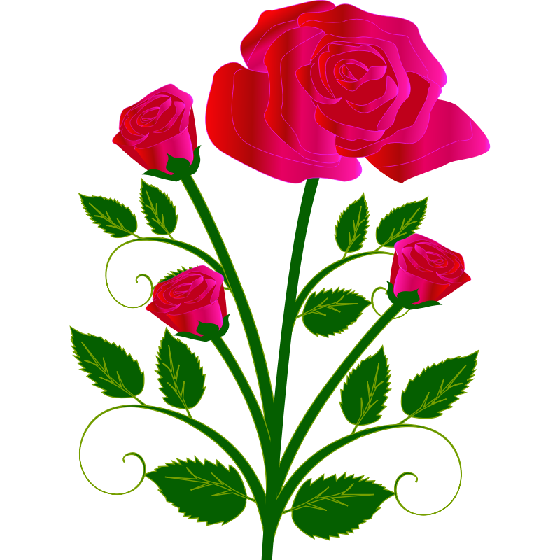 Clipart - rose