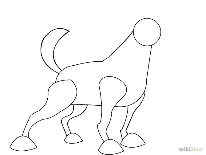 how to draw a dingo for kids