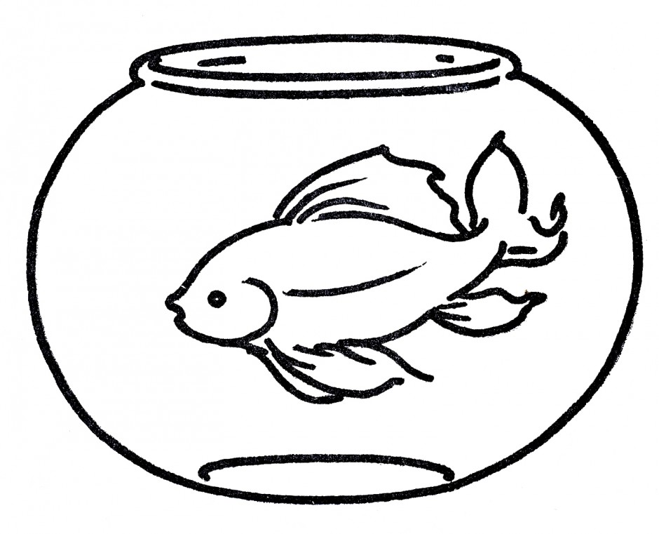 Fish Bowl Outline