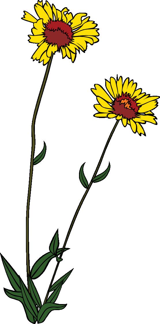 Wildflower Clip Art - Cliparts.co