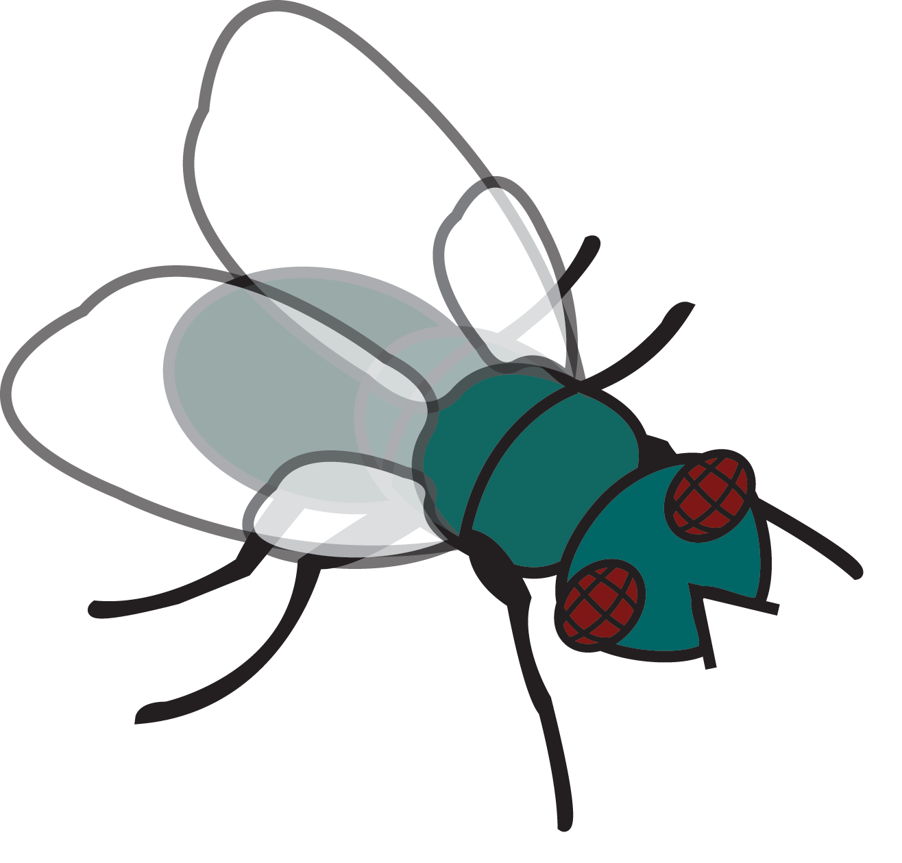 animated fly clipart - photo #7