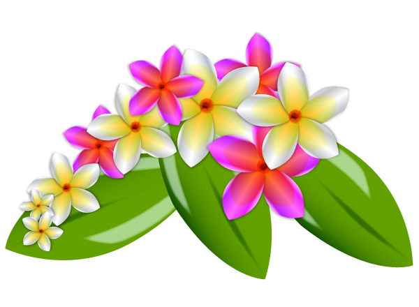 Frangipani Clipart - Cliparts.co