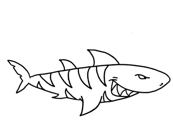 Baby Tiger Shark Coloring Pages