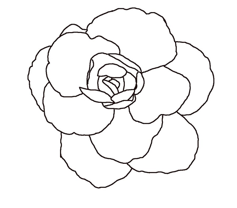 Flower In Line Drawing : Flower line drawing cliparts