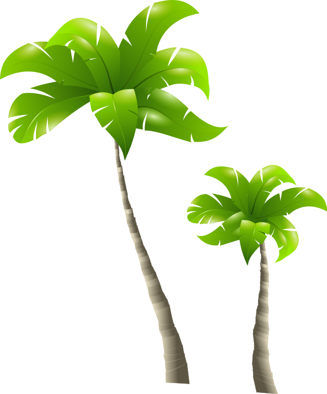 Free to Use & Public Domain Palm Tree Clip Art