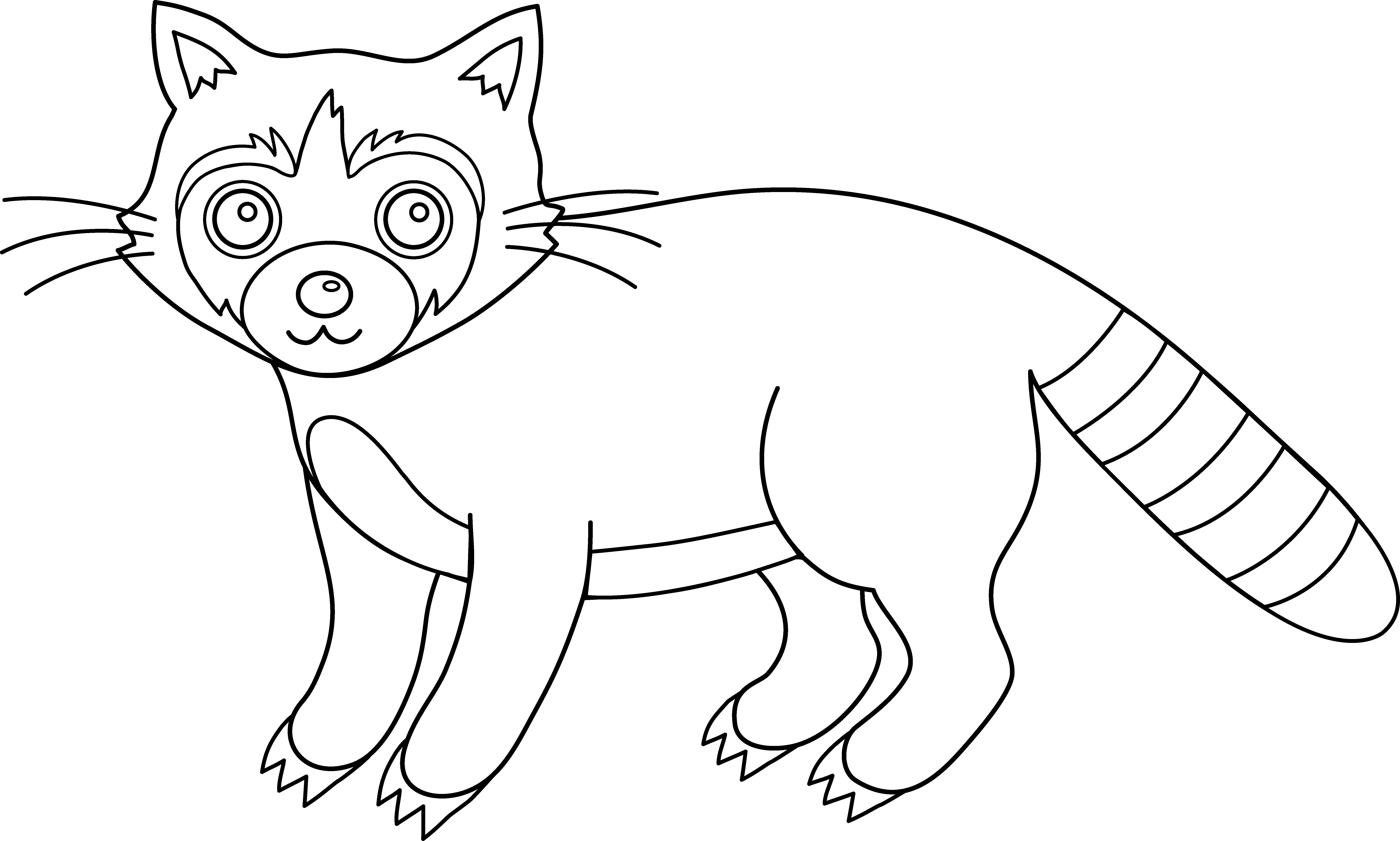 Cartoon Coloring Colorable Raccoon Raccoon Line Art : coloring ...