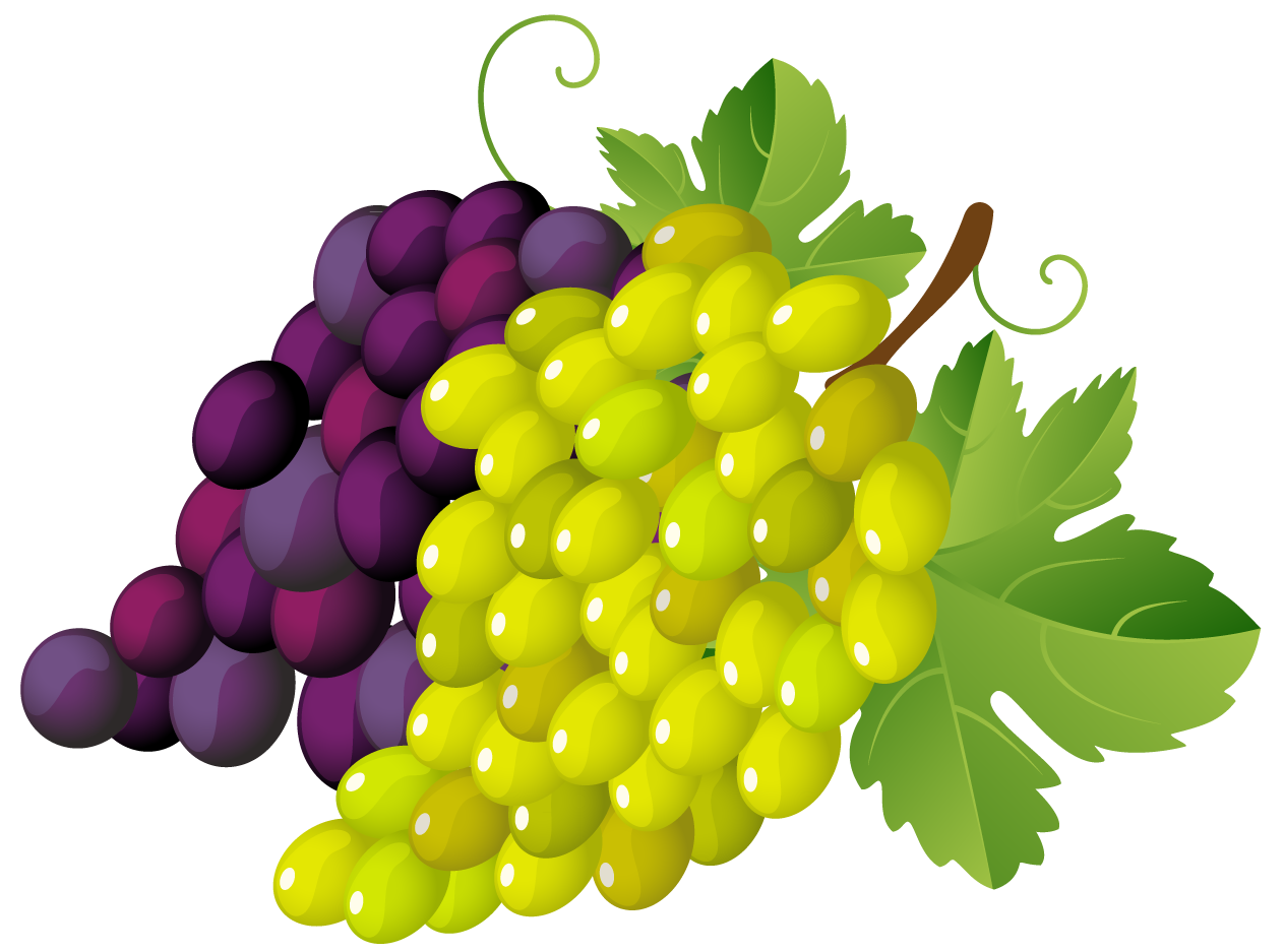 Grapes Clip Art - Cliparts.co