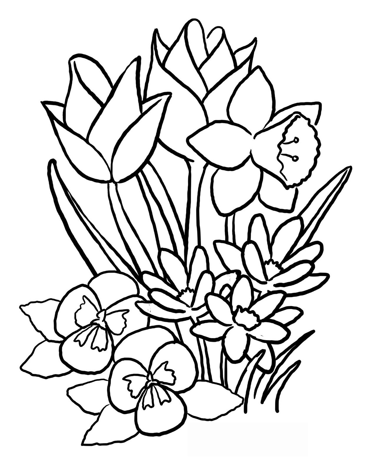 Spring flowers pictures to colour