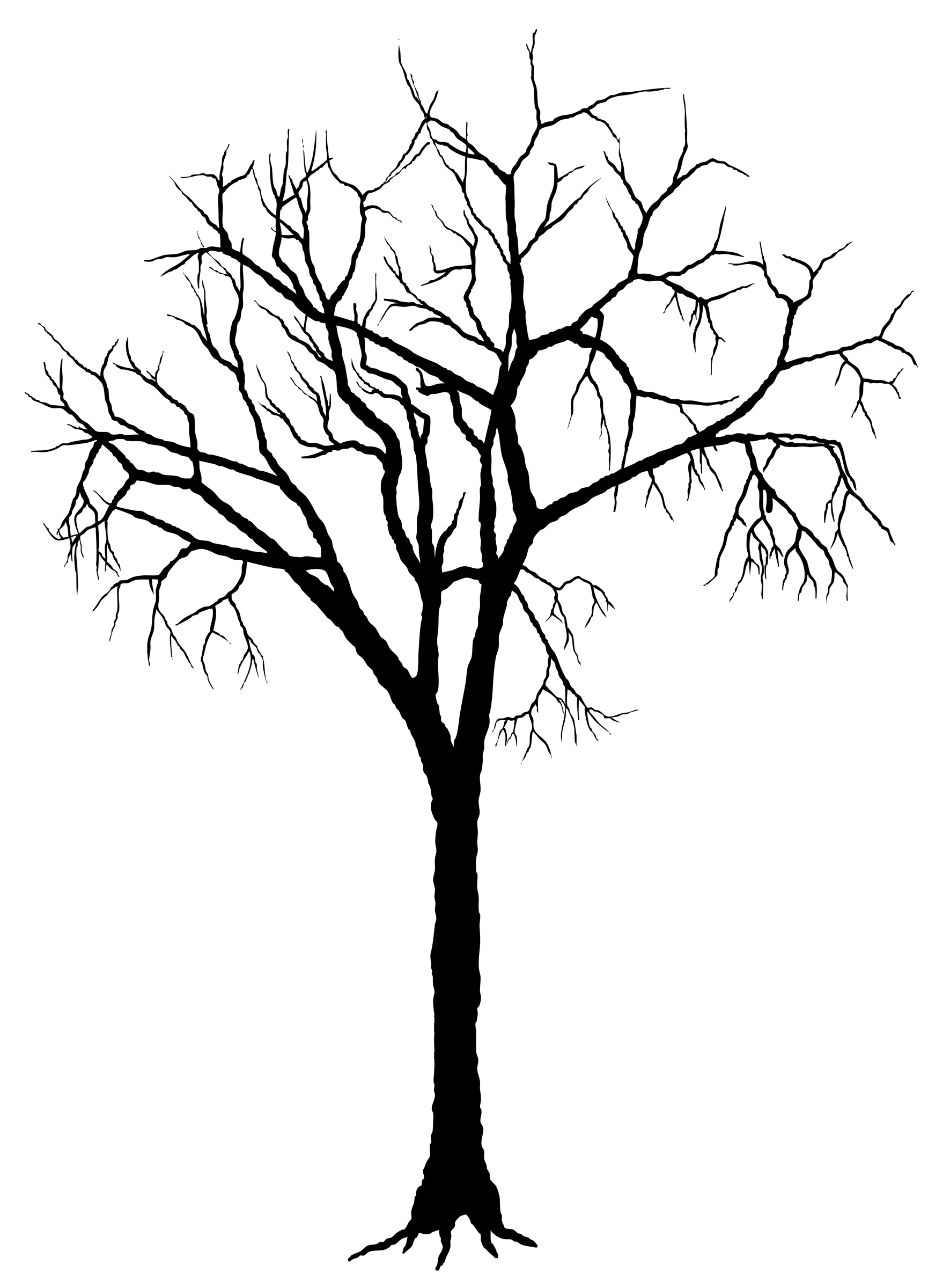 clip art dying tree - photo #47
