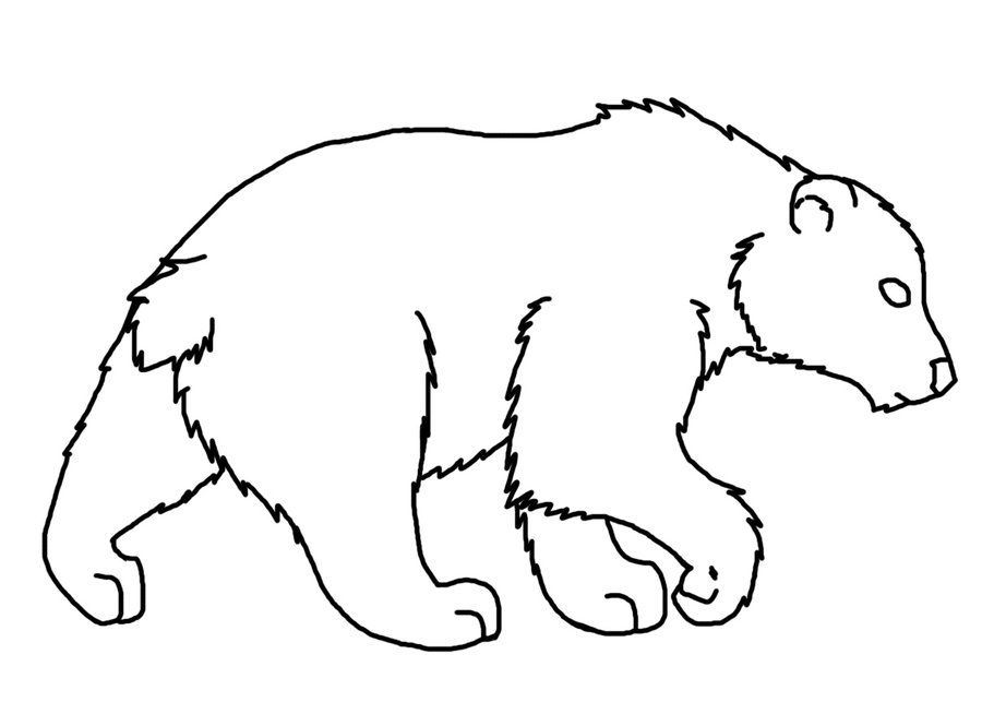 Line Drawing Bear : Bear line art cliparts
