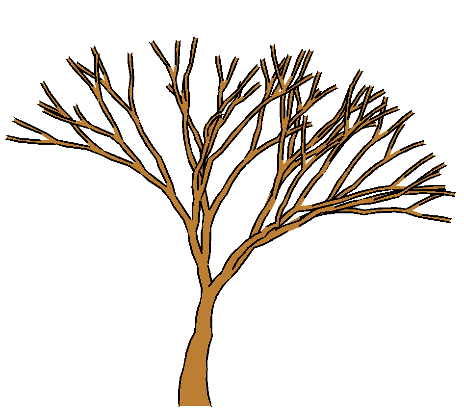 Bare Tree Outline - Cliparts.co