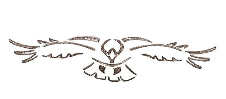 white hawk tattoo clipartsco